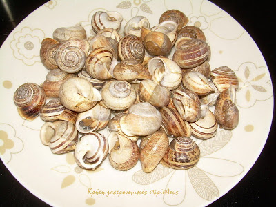 Λιανοί χοχλιοί βραστοί (σαλιγκάρια βραστά)