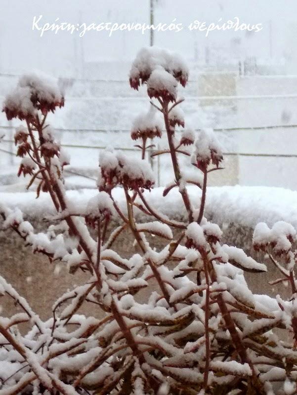 Χειμωνιάτικη γρανίτα!