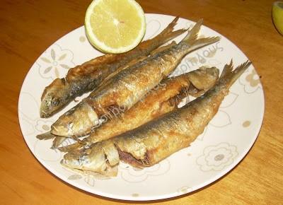 Ψάρια και ψαράκια για τις 6 του Αυγούστου!